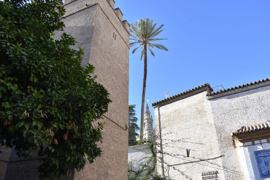 Barrio de Santa Cruz er et historisk nabolag i Sevilla